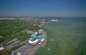 В Одессе у пляжа Ланжерон выделяют более половины гектара земли владельцам дельфинария