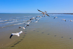 Одесский фотограф показал с высоты птичьего полета потрясающую красоту Дуная (ФОТО)