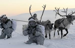 """Гибридные """"белые человечки"""" штурмуют Норвегию"""