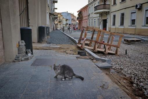 Как ремонтируют Воронцовский переулок в Одессе (ФОТО)