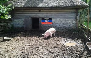 """Фейковые """"посольства"""" фейковых республик ширятся по Европе"""