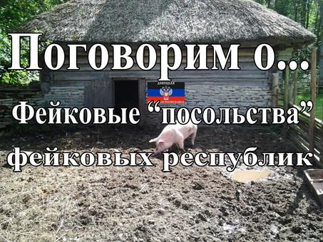 """Фейковые """"посольства"""" фейковых республик (видео)"""
