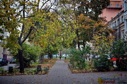 Красивая золотая осень в Одессе (ФОТО)