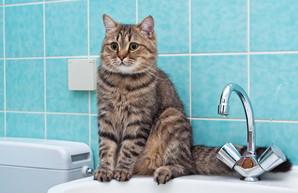 Приморский и Малиновский районы Одессы остались без воды