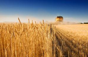 Украина в 2019-м установила рекорд по экспорту аграрной продукции
