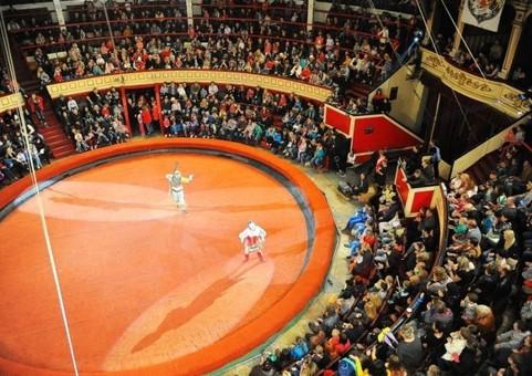 """Цирк """"Без ограничений"""" с новой программой в Государственном цирке Одессы"""