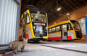 Как в 2019 году Одесса и другие города Украины пополняли свои трамвайные парки