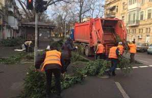 В Одессе ликвидировали кладбища елок