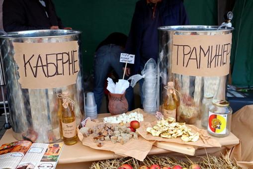 Для туристов в Одесской области создают винные и гастрономические маршруты