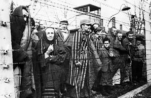 Советские фото освобождения концлагеря Освенцим могут быть постановочными