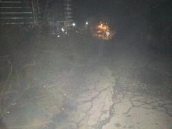 В Одессе уничтожили огромное количество деревьев на склонах у моря (ФОТО)