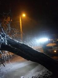 На Одессу обрушились ураган со снегопадом (ФОТО, ВИДЕО)