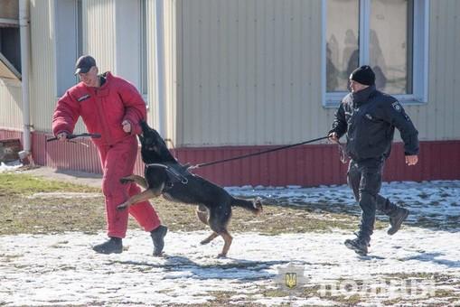 Одесская полиция открыла обновленный центр кинологии (ФОТО)
