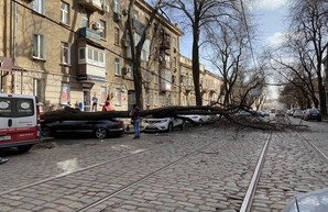 Итоги урагана в Одессе