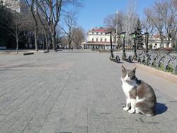 Карантин в Одессе: день третий (ФОТО)