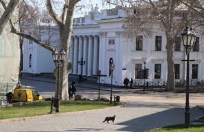 В Одессе соберется внеочередное заседание исполкома