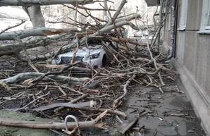 На Одессу надвигается ураган