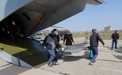 В Одессу из зоны АТО на лечение доставили 14 раненых украинских военнослужащих