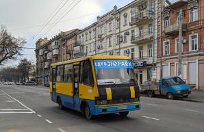 В Одессе восстанавливают движение еще одного автобусного маршрута