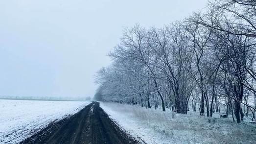 В последний день марта на юге Одесской области выпал снег (ФОТО)