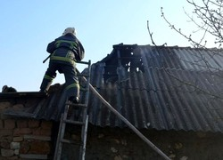 В Одесской области жертвами пожара стали домашние животные и птицы