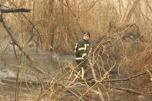 К тушению лесных пожаров в Чернобыльской зоне привлечены одесские спасатели