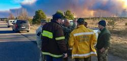 Как горел лес в Чернобыльской зоне (ФОТО)