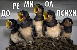 Скоро в России будут петь с балконов