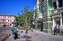 Около дома Руссова высадили новые деревья (ФОТО)