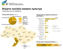 Засуха: в Одесской области уже погибло больше половины урожая озимых