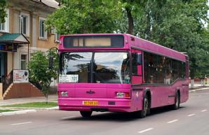 Измаил возобновляет движение городских автобусов