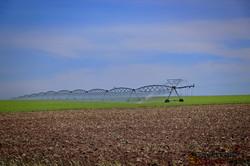 Одесской области угрожает недостаток воды: как с этим бороться (ФОТО, ВИДЕО)