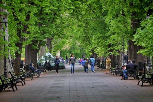 В Одессе заседает городской совет (трансляция)