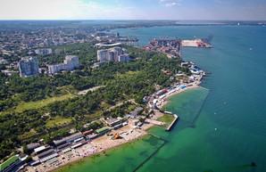 Как к берегам Одессы принесло гниющие водоросли (ВИДЕО)