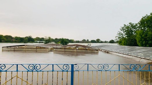 Юг Одесской области пострадал от урагана