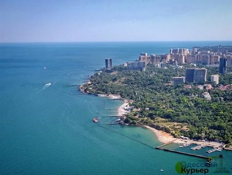 """Танкер """"Delfi"""" будут убирать с пляжа до 20 июля: мэрия Одессы будет судиться за ущерб"""