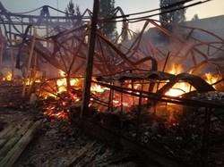 В курортной Затоке сгорела база отдыха (ФОТО)