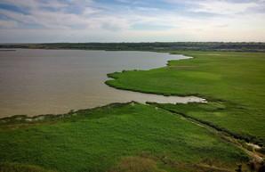 В Одесской области будут расчищать каналы и ерики на Дунае