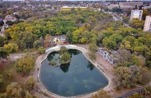 Дюковский парк: яркие краски осени в Одессе (ФОТО, ВИДЕО)