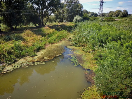 В Одесской области взялись расчищать каналы из Дуная в озера