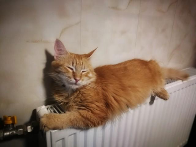 В Одессе сильно подорожало центральное отопление