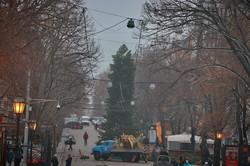 На главной улице Одессы уже ставят новогоднюю елку (ФОТО)