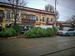 Почем в Одессе новогодние елки