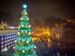Одесская новогодняя елка (ФОТО, ВИДЕО)