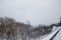 Одессу засыпало снегом (ФОТО, ВИДЕО)