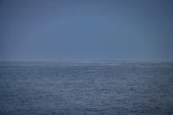 """Море у берегов Одессы """"парит"""" из-за сильных морозов (ФОТО, ВИДЕО)"""