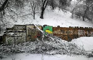 В Одессе падают деревья