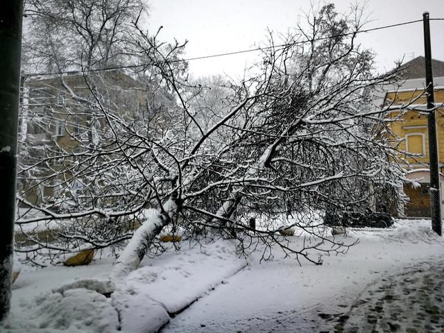 В Одесской области нет света в более чем 130 населенных пунктах