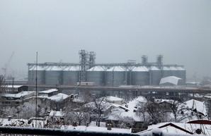 Порты Одесской области лидируют в обработке грузов в январе