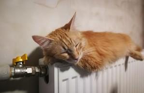 В Одессе обещают не менять тариф на центральное отопление до конца сезона